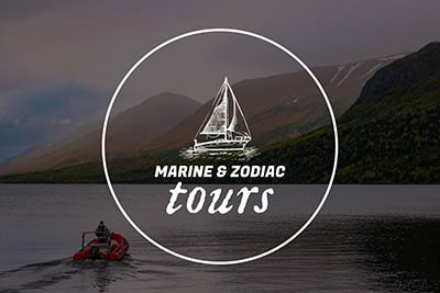 Wild Gros Morne Outdoor Experiences
