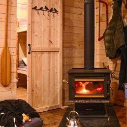 camp fire dog LQ